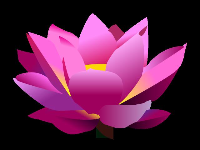 Redvelveteatingcupcakes adobe illustrator cs. Lotus flower graphic png