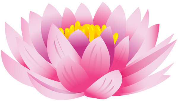 Lotus flower png. Clip art image gallery