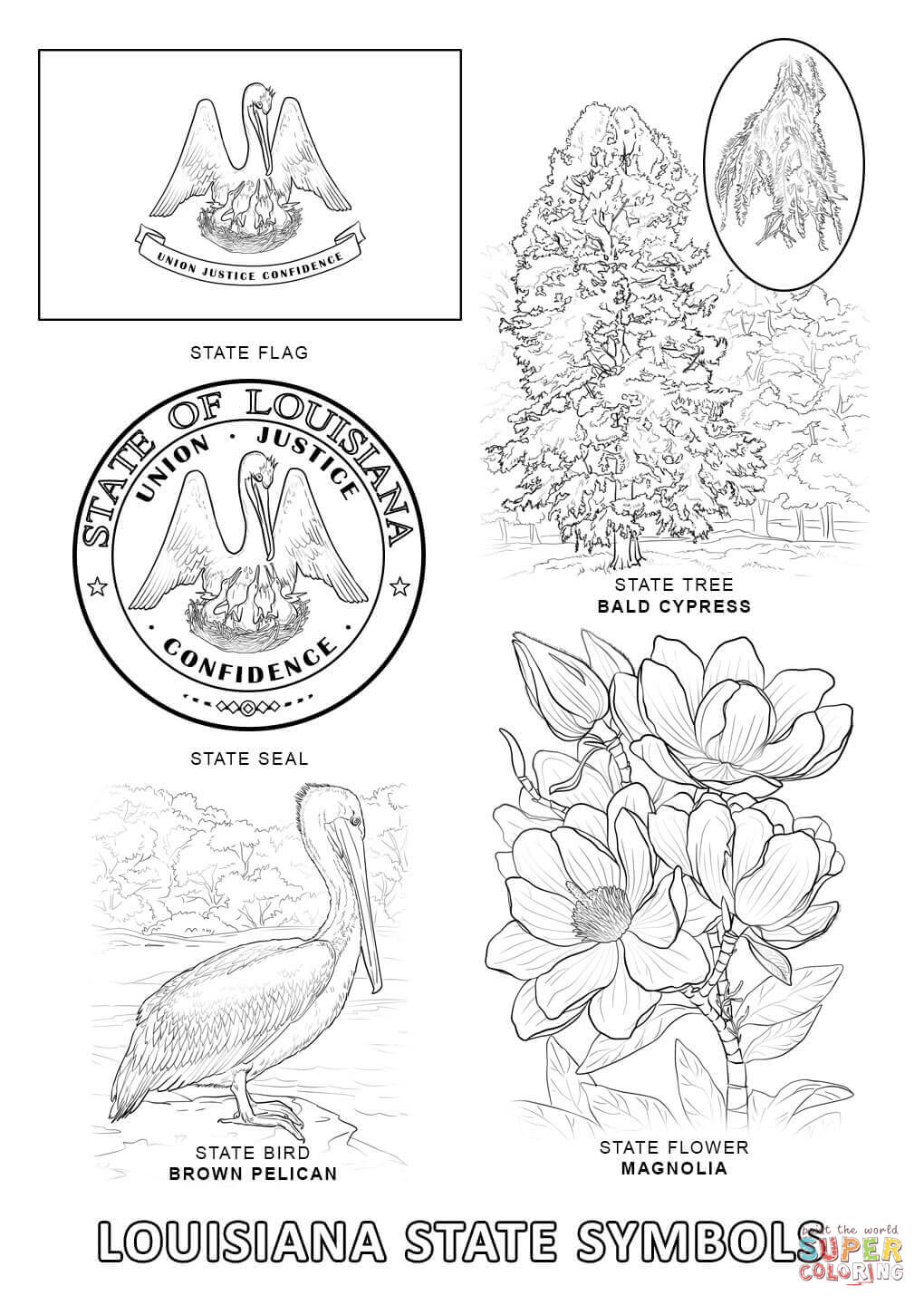 Louisiana clipart coloring page. State symbols free printable