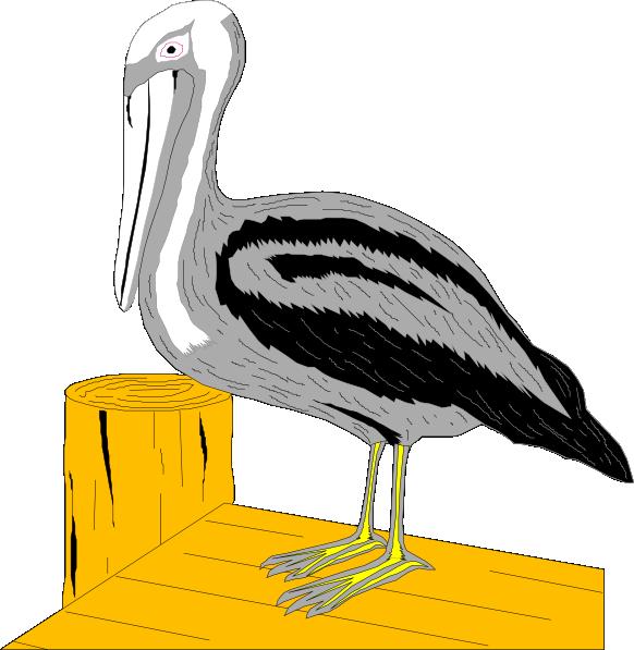 Louisiana clipart pelican. Brown at getdrawings com
