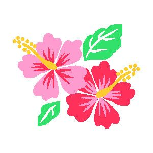 Free clip art for. Hibiscus clipart luau birthday