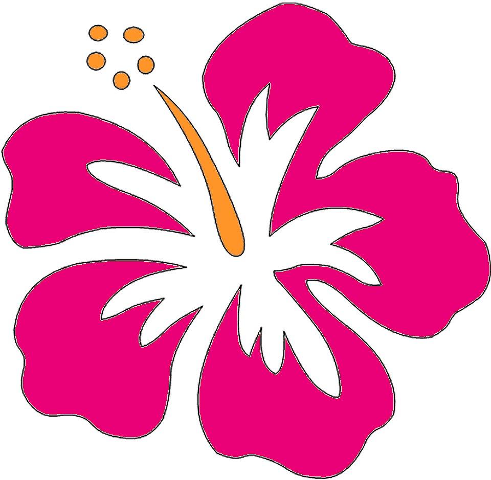 Wikiclipart . Luau clipart hawaiian food