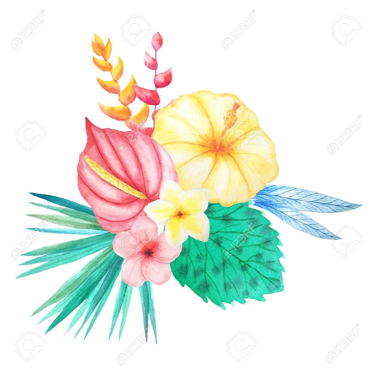 Jungle flowers free download. Luau clipart rainforest flower