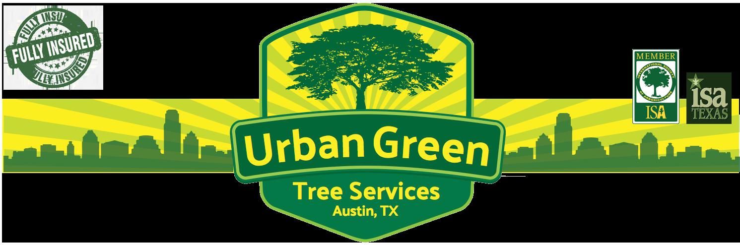 Lumberjack clipart tree removal. Urban green austin services