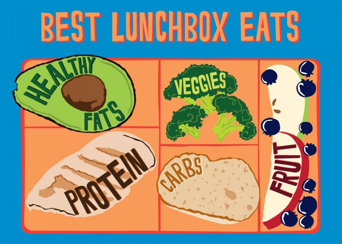Lunchbox clipart helathy. Anatomy of a healthy