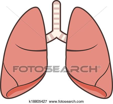 Free lung download clip. Lungs clipart cartoon