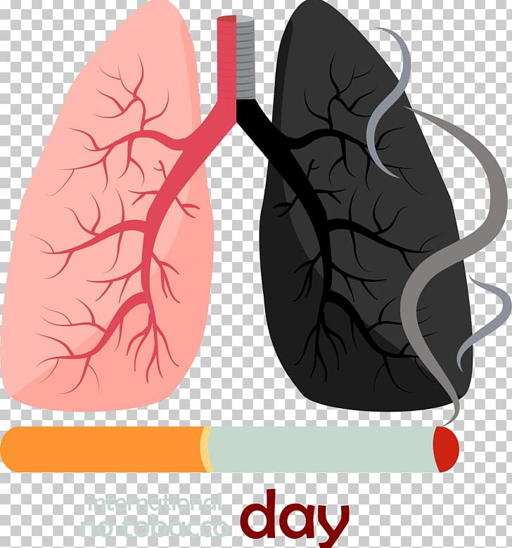Smoking euclidean cigarette png. Lungs clipart lung smoker