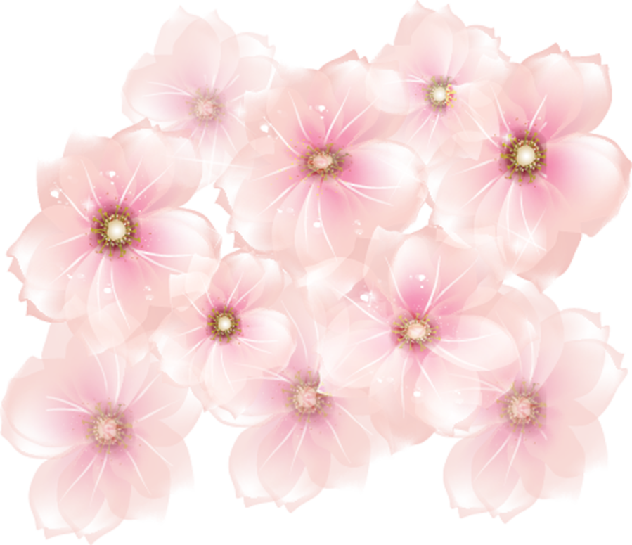 Flowers transparent gallery yopriceville. Lungs clipart pink