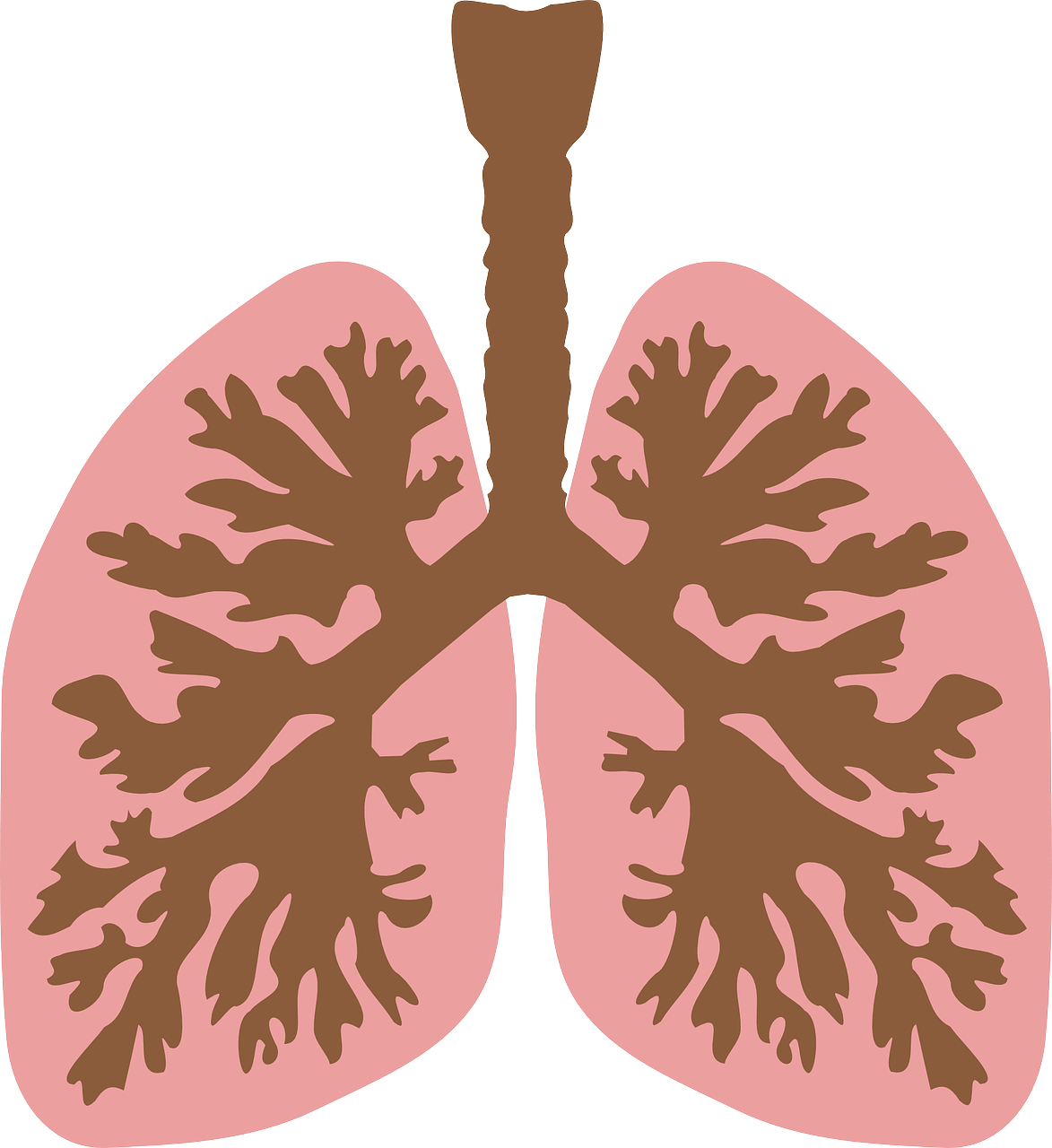 Lungs clipart pneumonia. Salient points to remember