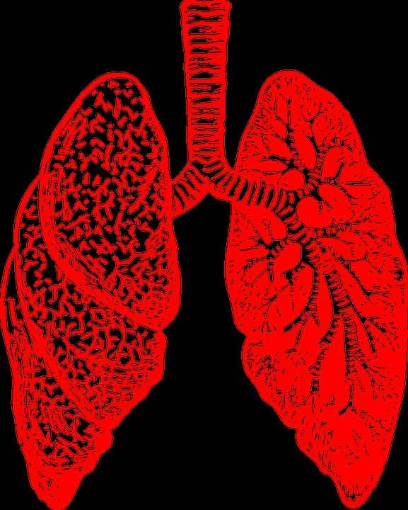 Lungs clipart pneumonia. Lung cancer awareness month