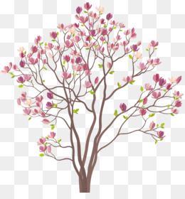 Kobus southern clip art. Magnolia clipart magnolia tree