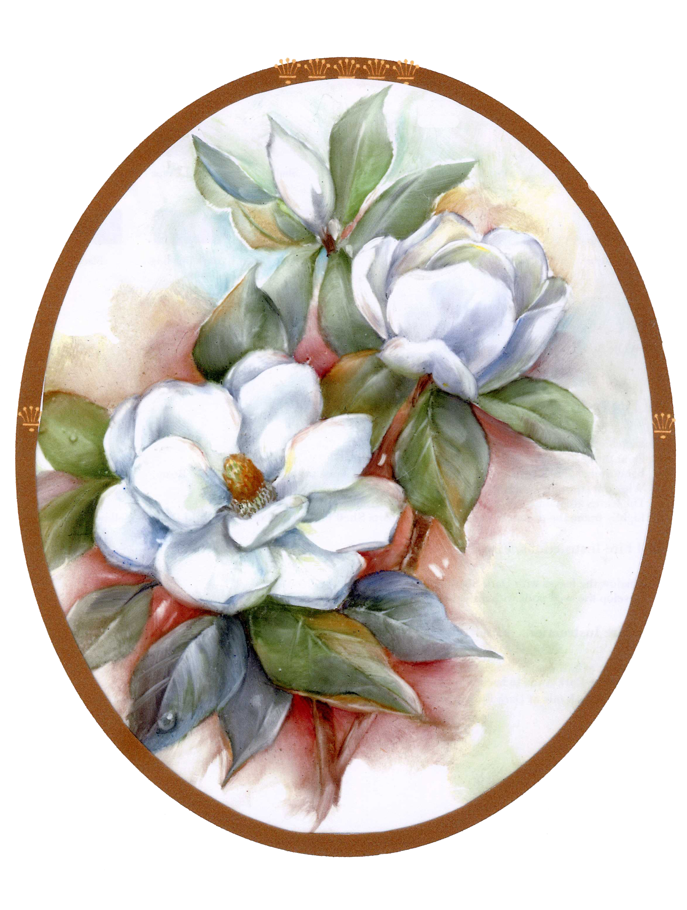 Magnolia Clipart Southern  Magnolia Southern Transparent