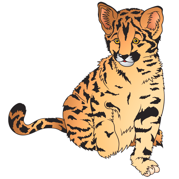 Gallery animal frames illustrations. Wildcat clipart baby