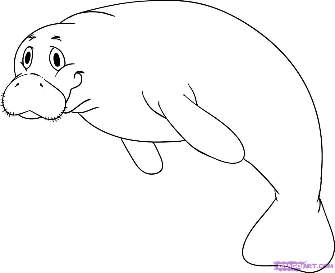 Manatee clip art | Clipart Panda - Free Clipart Images