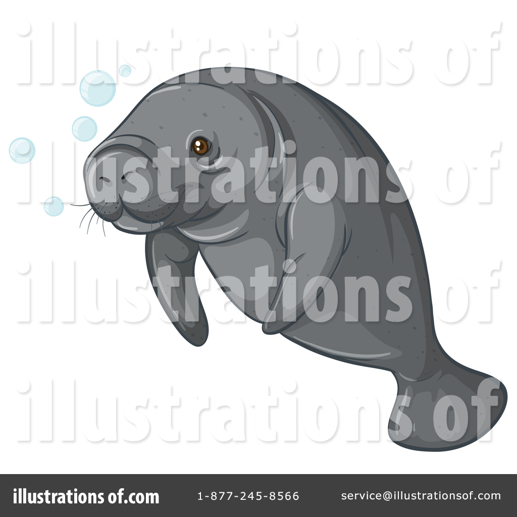 Illustration by graphics rf. Manatee clipart