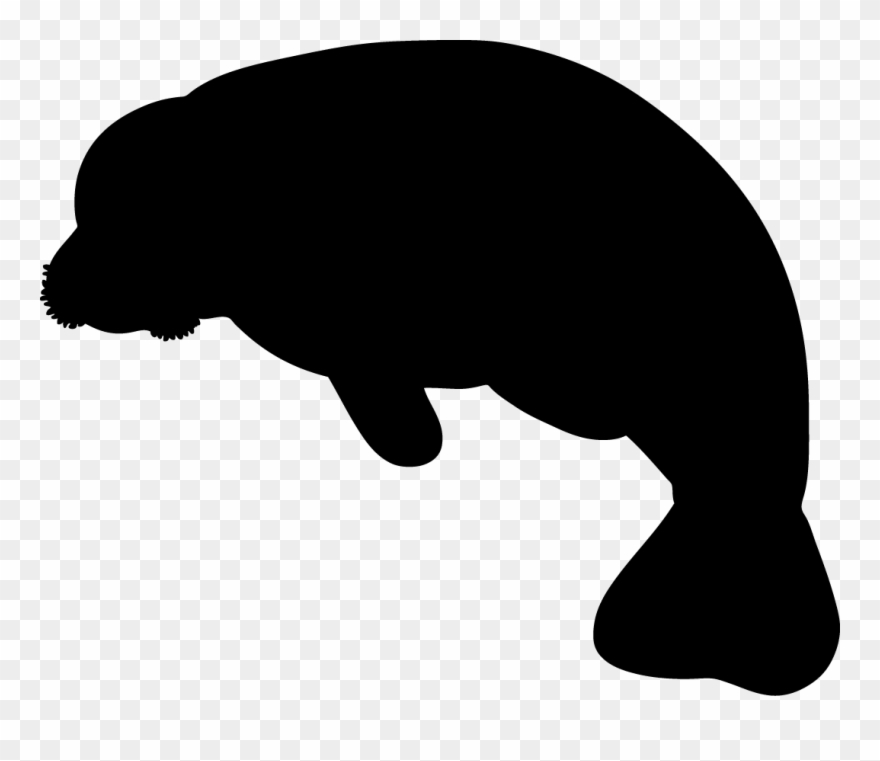 Black and white png. Manatee clipart clip art