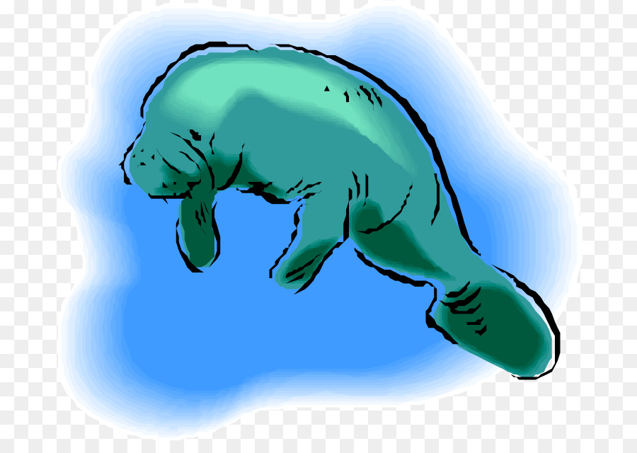 Green background drawing fish. Manatee clipart drawn