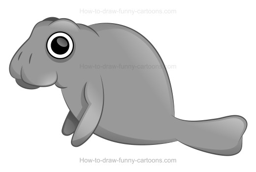 Manatee clipart drawn. How to draw a