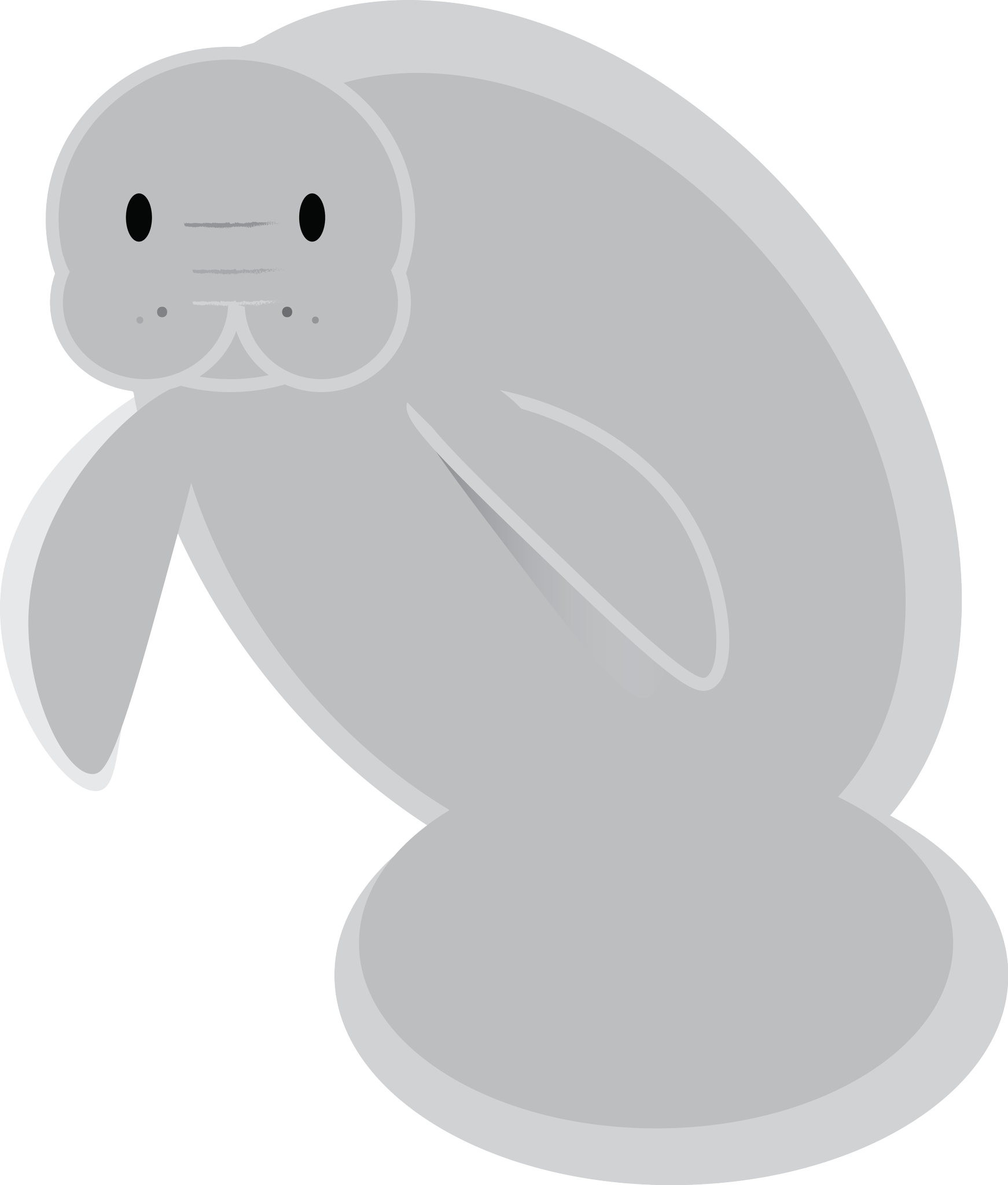 Myfwc on twitter help. Manatee clipart dugong