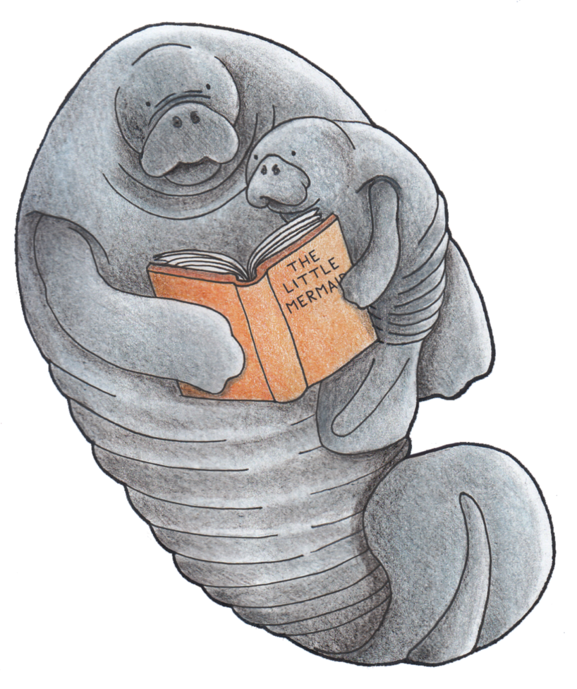 Manatee clipart sketch. Absol g giulia pucci