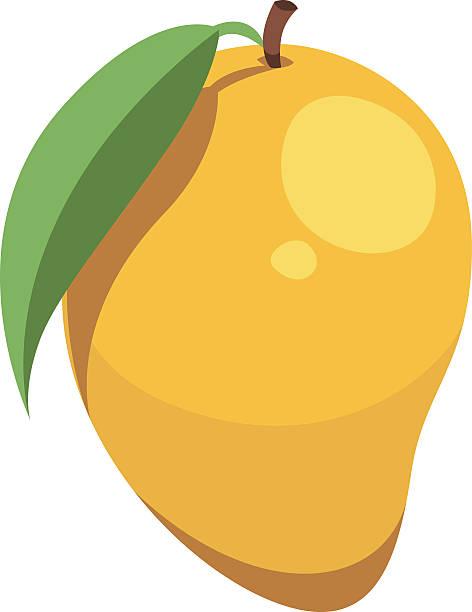 Mango clipart 1 mango. Images station