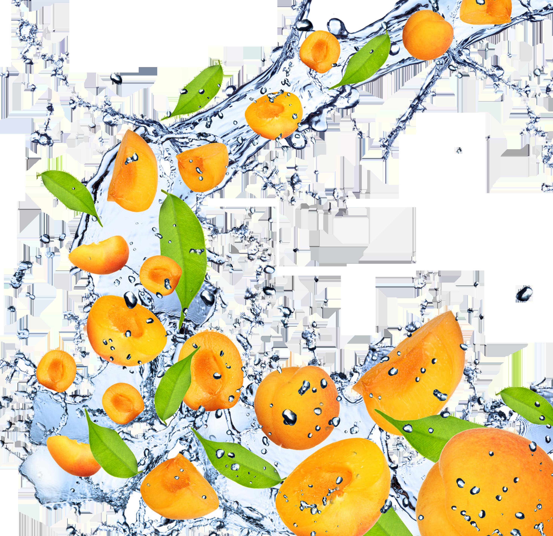 Fruit apricot high definition. Mango clipart 1080p