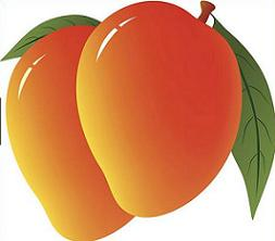 Mango clipart. Free