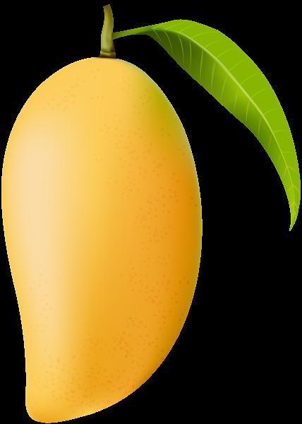 Png clip art image. Mango clipart