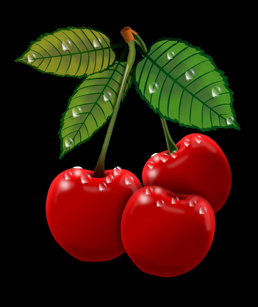 Clip art transprent png. Mango clipart cherry