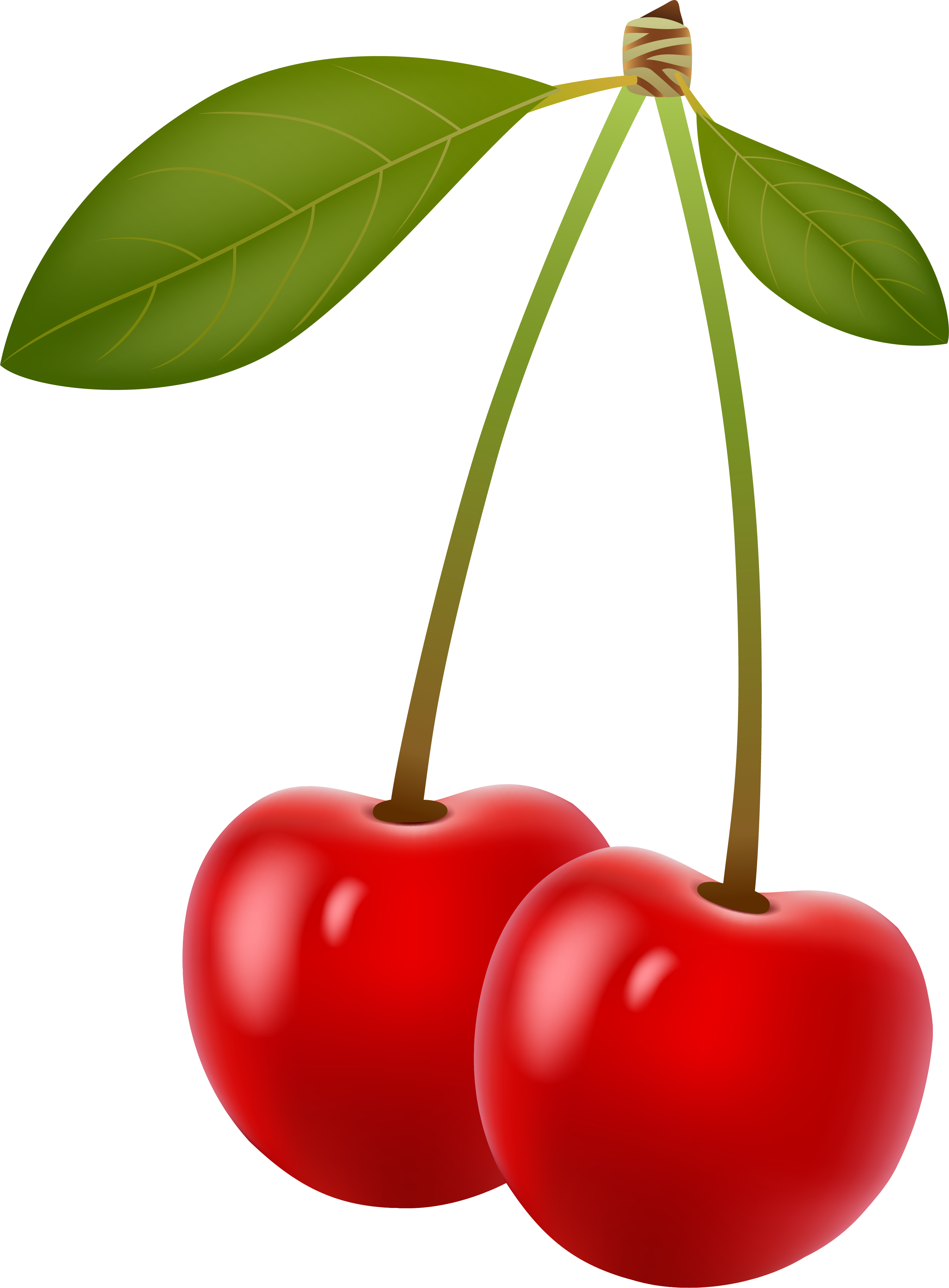 Mango clipart cherry. Berry clip art red