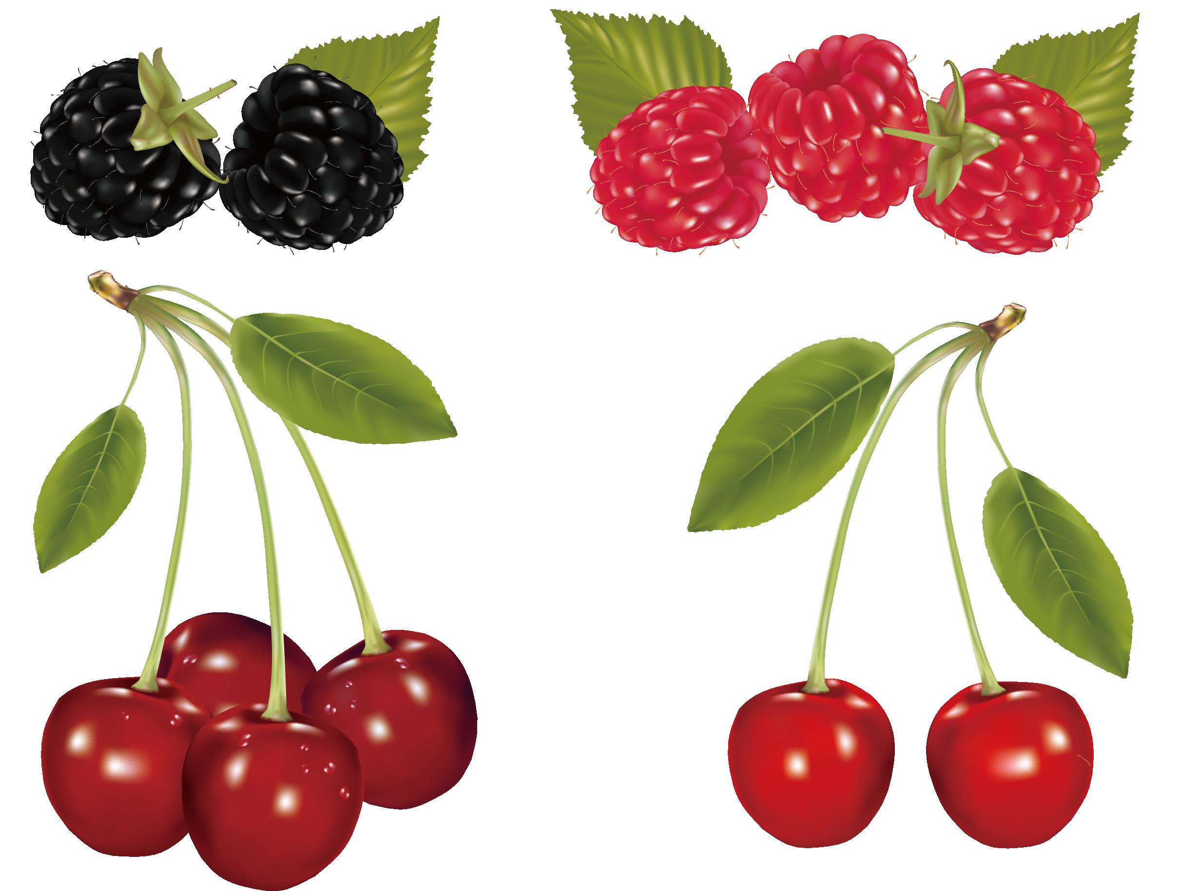Fruit clip art and. Mango clipart cherry