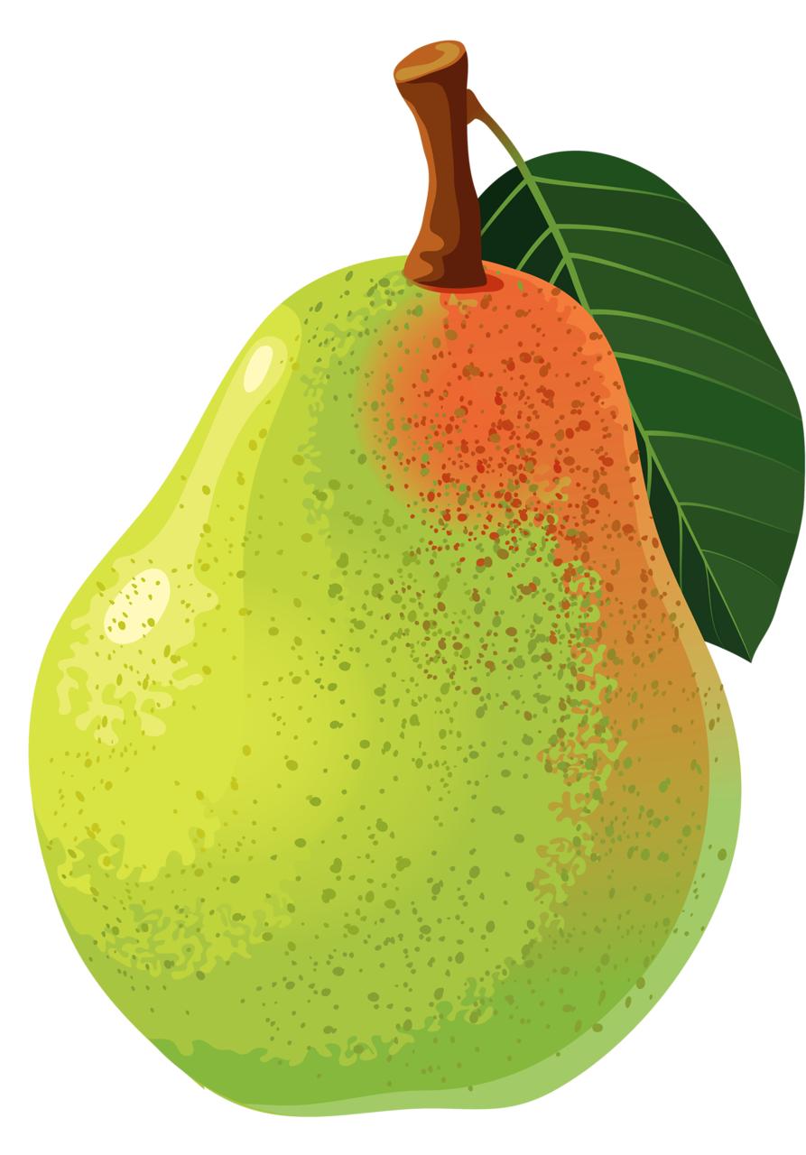 Mango clipart dotted. Pin by kim heiser