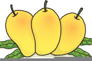 th anniversary portal. Mango clipart five