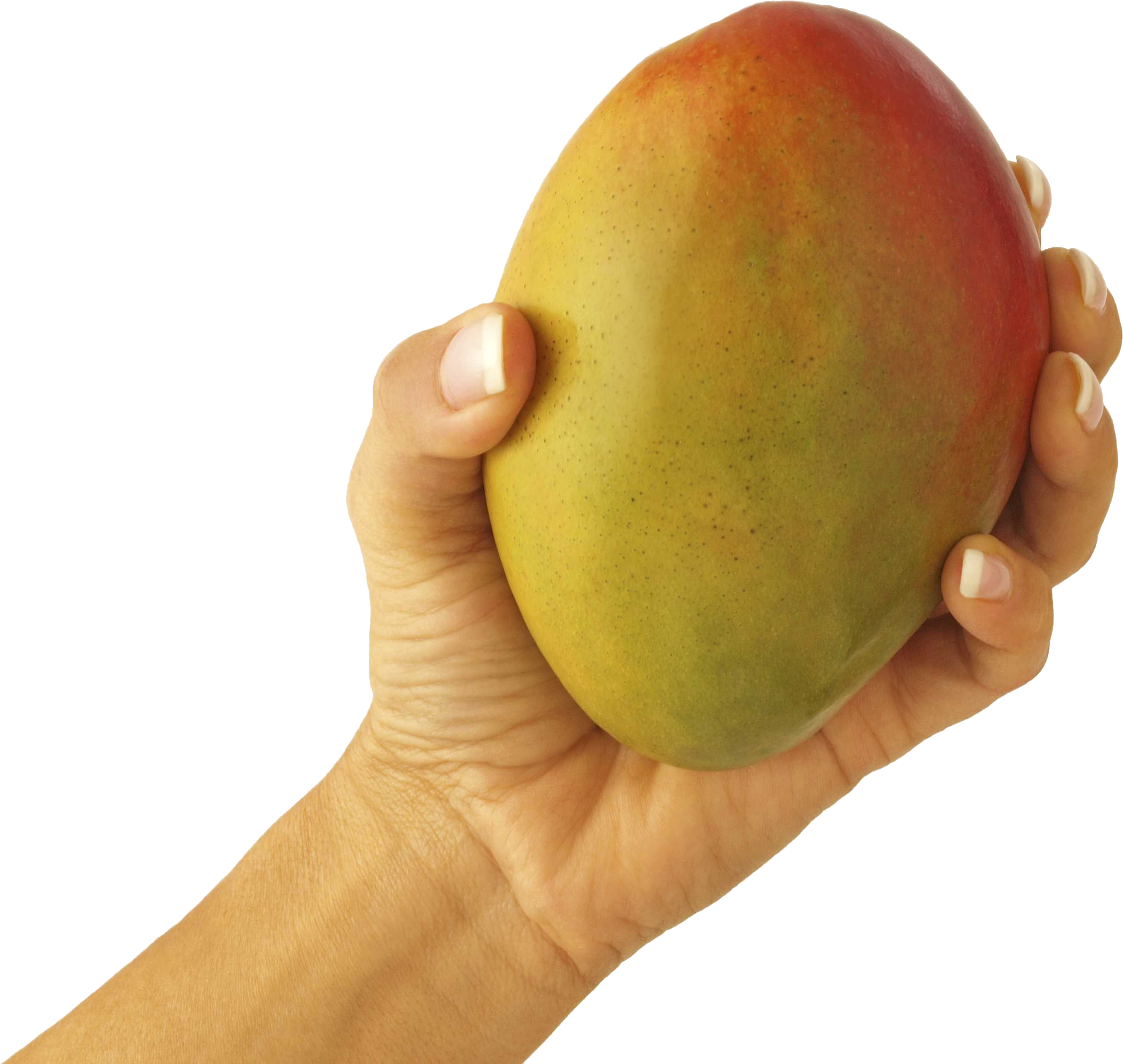 Mango clipart five. In hand png image