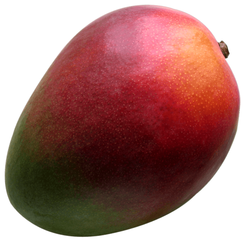 Mango clipart fresh. Png free images toppng