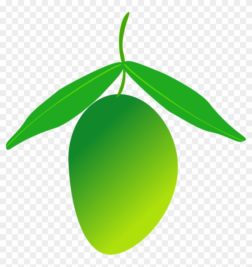 Mango clipart green mango, Mango green mango Transparent ...