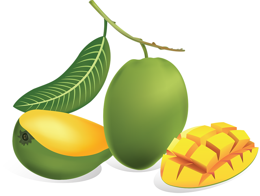Mango clipart green mango. Png images transparent free