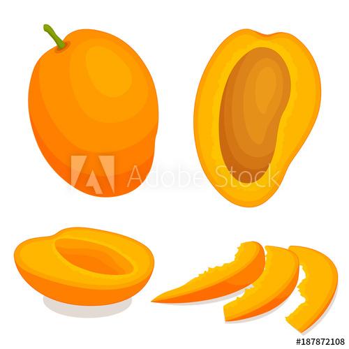 Vector whole and sliced. Mango clipart half mango