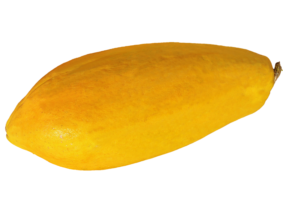 Mango clipart jpeg. Png shop of library