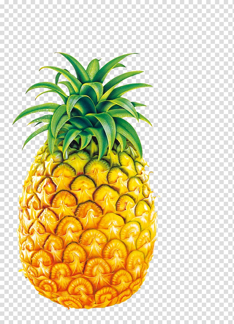 Juice fruit bromelain big. Mango clipart large pineapple