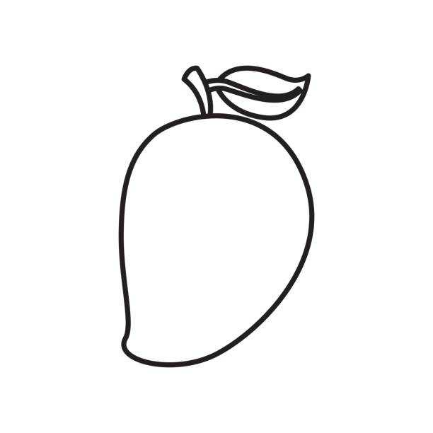 Drawing picture free download. Mango clipart line art