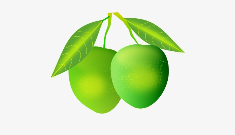 Mango clipart national. Graphic freeuse library png