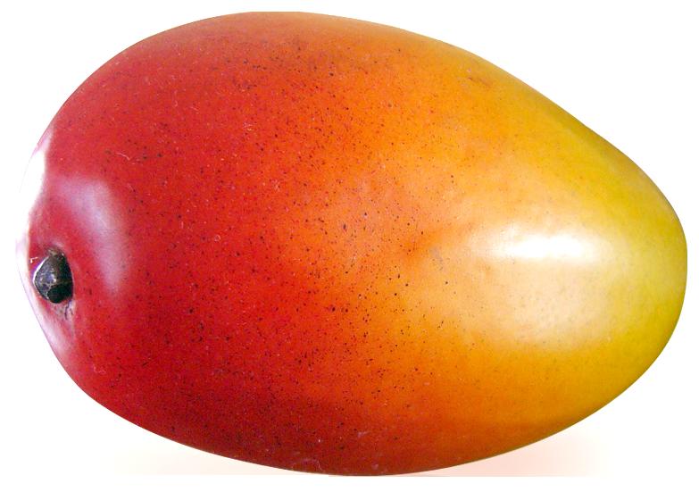 Mango clipart riped. Ripe png image purepng