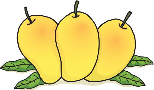 Mango clipart three. Mangos free cliparts download