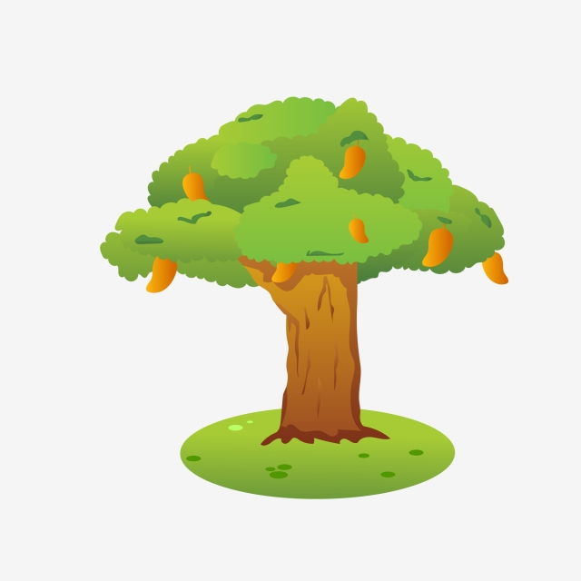 Png images vector and. Mango clipart tree