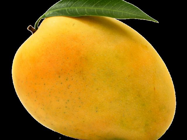 Mango Cliparts Free Download Clip Art