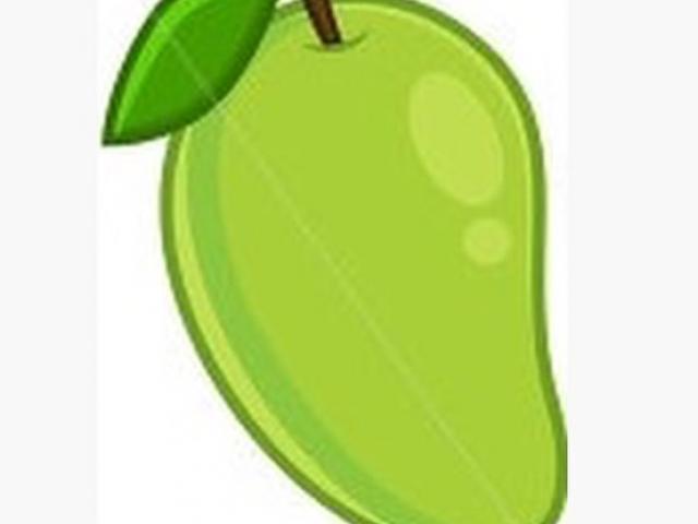 Free minnesota timberwolves download. Mango clipart unripe mango