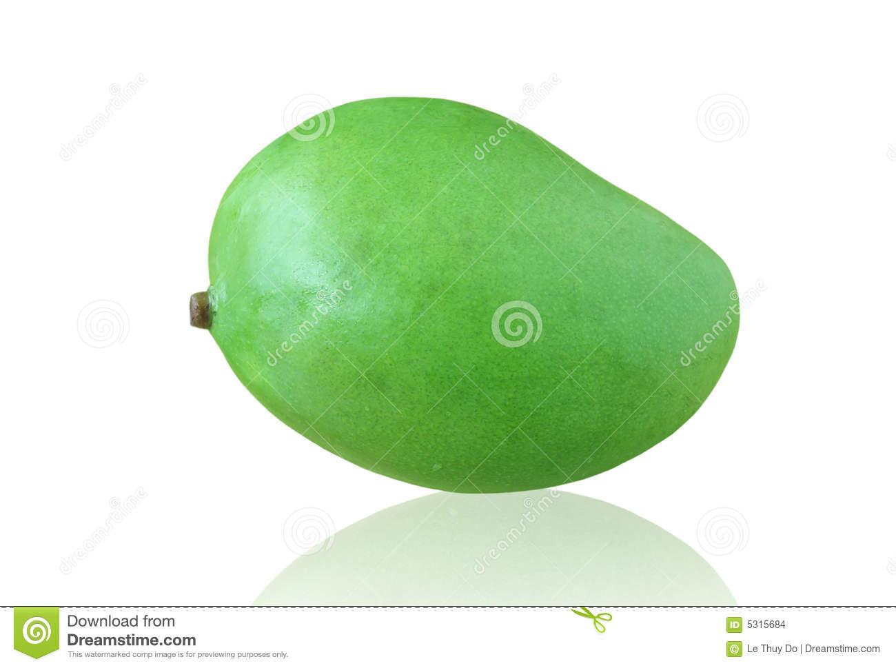Mango clipart unripe mango. Green station