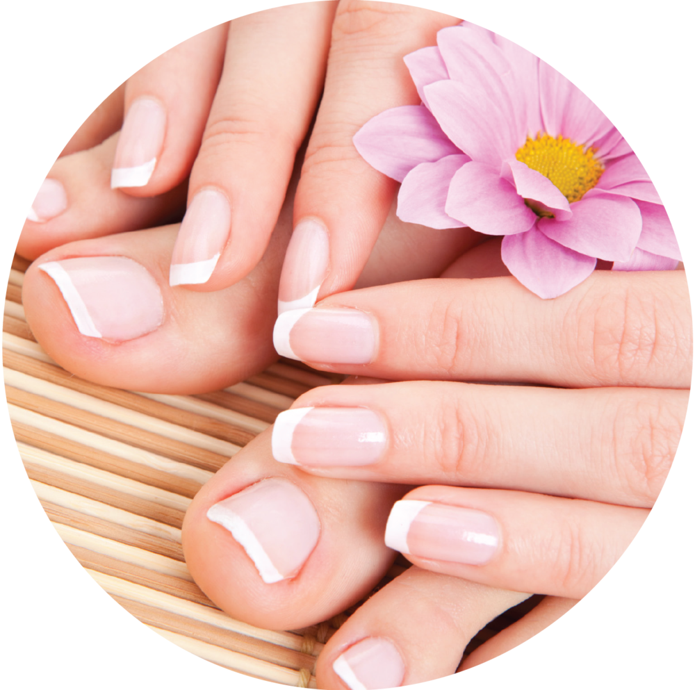 Png images manicure. Nails clipart manicured hand