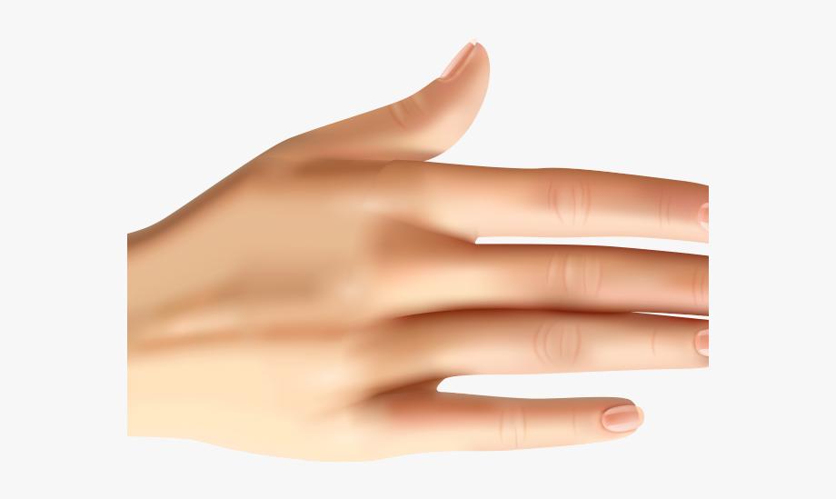 Nails clipart manicured hand. Skin nail polish free